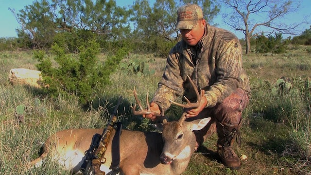 Maturing with the Deer • Lessons from the Treestand