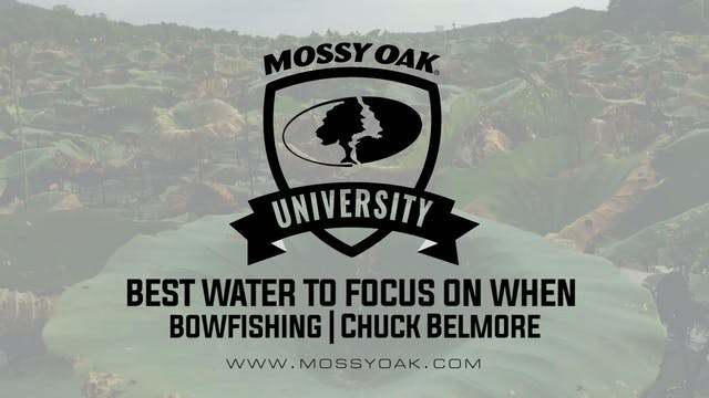Best Water to Focus on When Bowfishin...