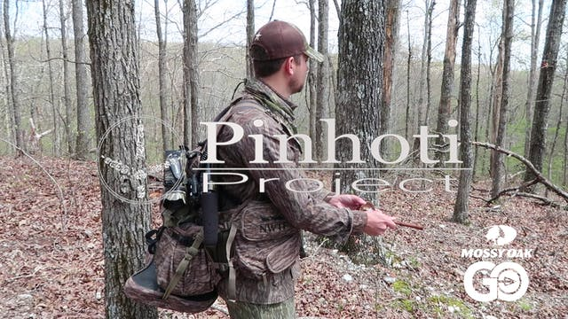 Hardwoods Hunting • Pinhoti Project D...