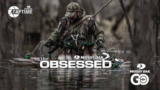 The Obsessed • Waterfowl