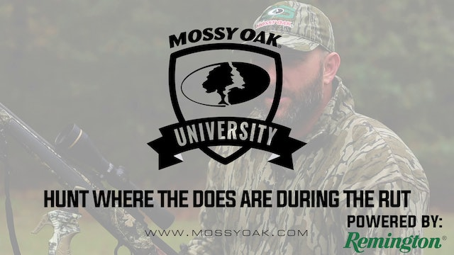 Hunt Where The Does Are During The Rut • Mossy Oak University