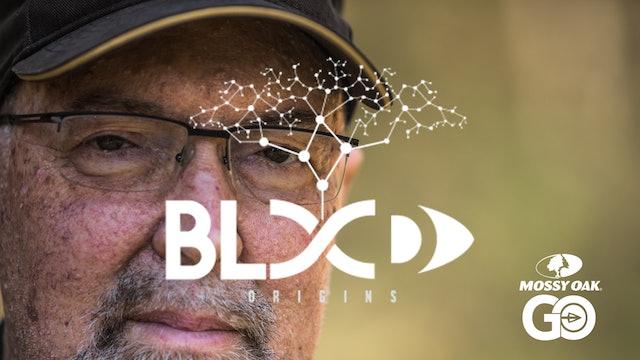 Press On • Blood Origins