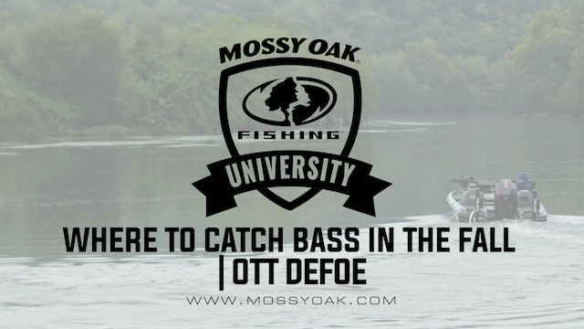 Where to Catch Bass in the Fall - Ott DeFoe Fishing Tips