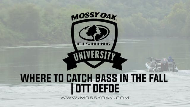 Where to Catch Bass in the Fall - Ott...