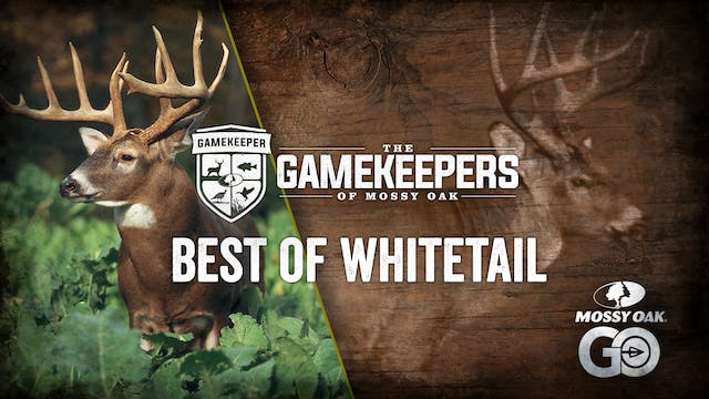 The Gamekeepers of Mossy Oak • Best of Whitetail