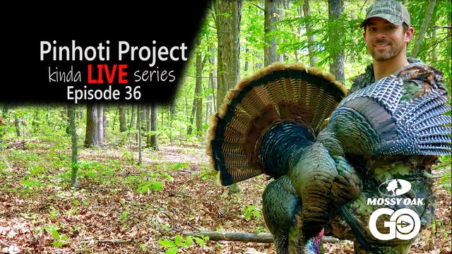 Kinda Live • Episode 36 • Pinhoti Pro...