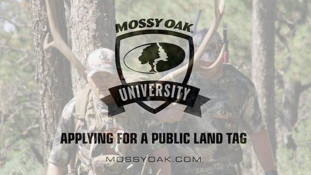 Applying for a Public Land Tag • Moss...