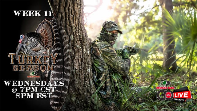 LIVE: 5.6.2020 Turkey Season Replay
