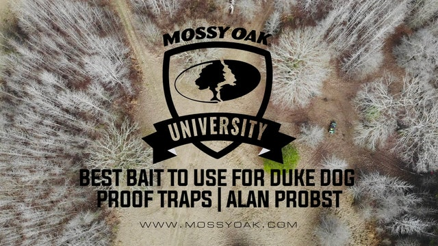 Best Bait to use for Duke Dog Proof Traps with Alan Probst