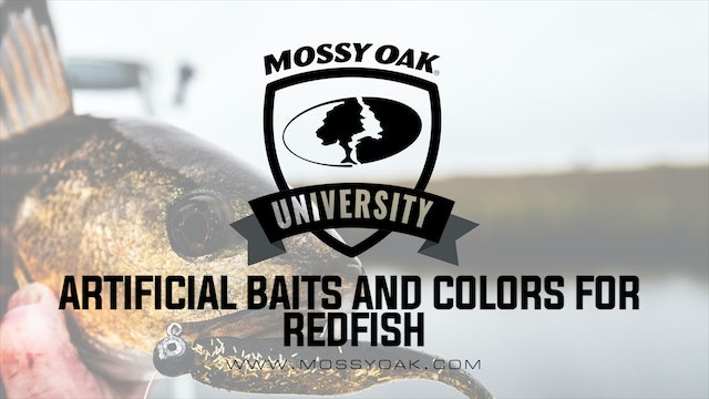 Best Artificial Baits & Bait Colors For Redfish | Inshore Fishing