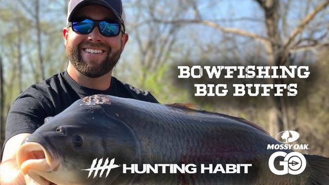 Hunting Habit · Bowfishing Giant Buffs