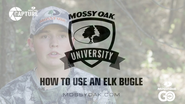 How to Use an Elk Bugle • Mossy Oak Univeristy