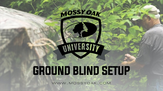 Ground Blind Setup