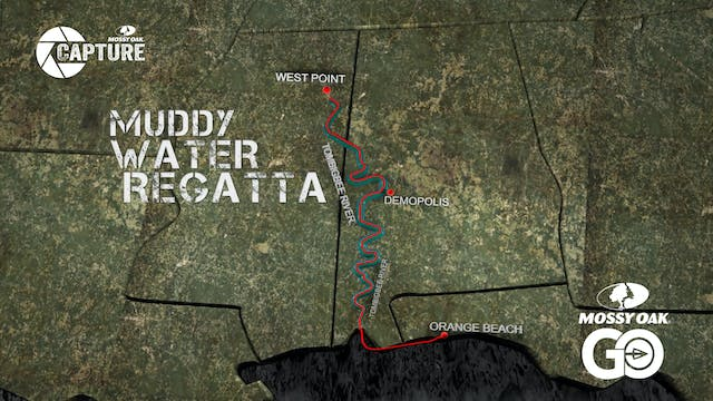 Muddy Water Regatta  • Short Film