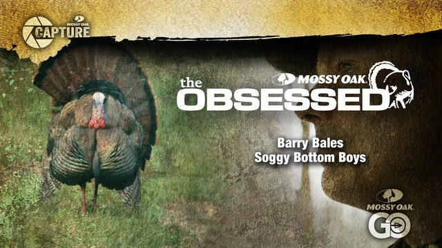 Barry Bales • The Obsessed