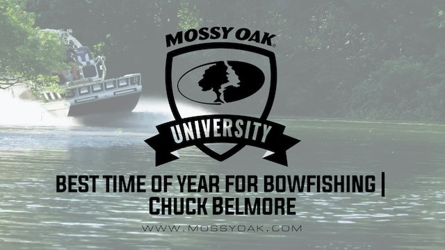 Best Time of Year for Bowfishing • Mossy Oak University