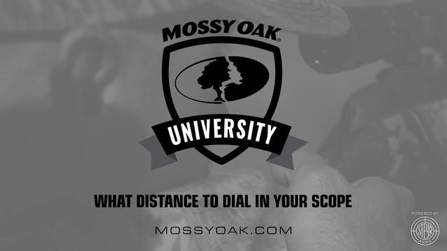 What Distance to Dial In Your Scope