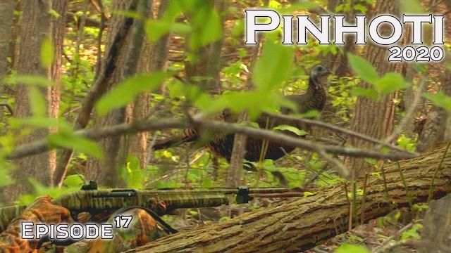Pinhoti 2020 Ep 17 • Pinhoti Project