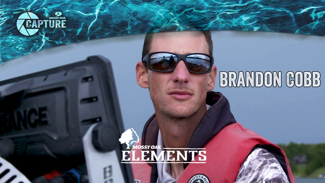 Brandon Cobb • Elements