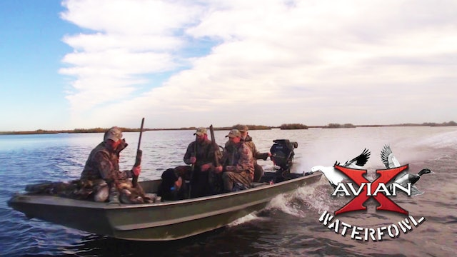 Cajun Duck Hunting • Avian X Waterfowl