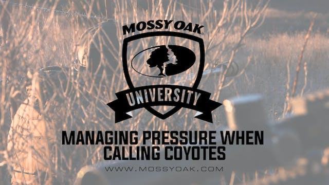 Managing Hunting Pressure when Callin...