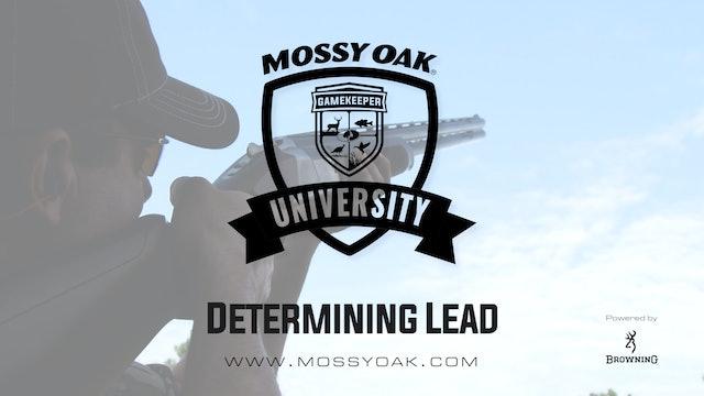 Determining Lead