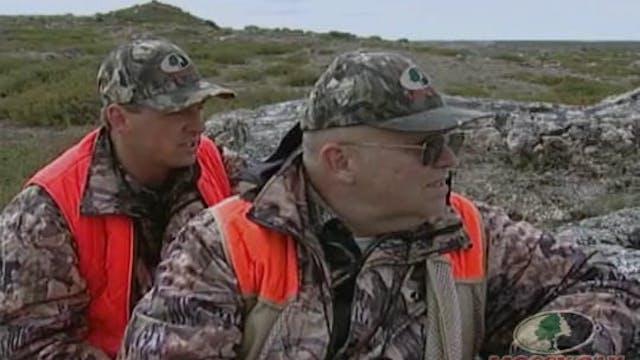 Caribou Hunting 2