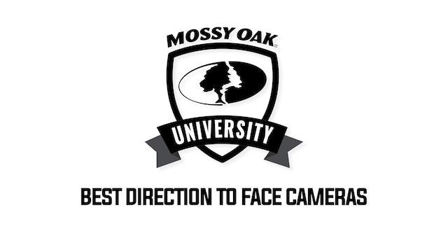 Tip 2-Face Cameras North