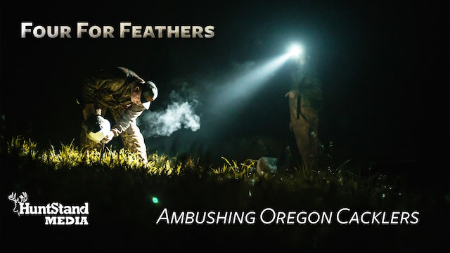 Ambushing Oregon Cacklers • Four for Feathers