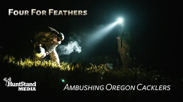 Ambushing Oregon Cacklers • Four for ...