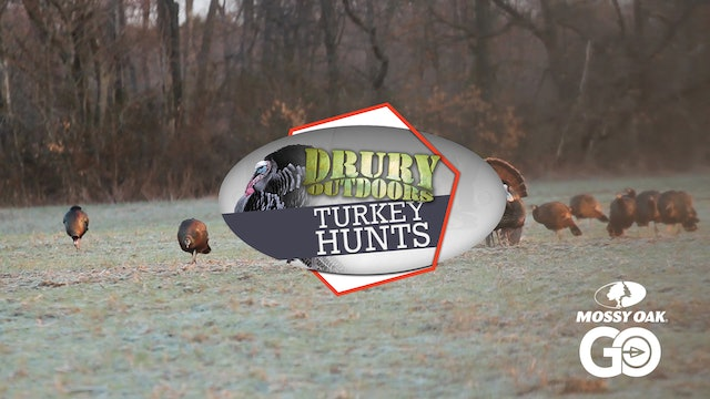 Father-Son Duo Perfect the Solo-Hen decoy Set • DOD TV