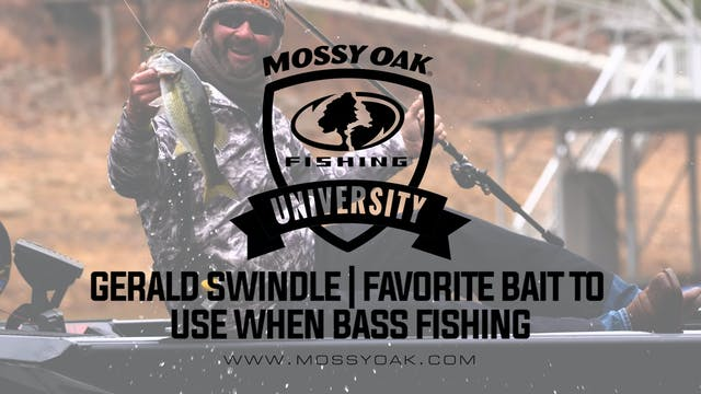 Favorite Bait To Use When Bass Fishing
