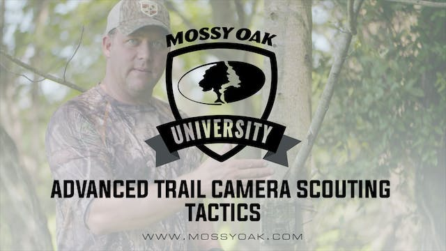 Advanced Scouting for Deer Using Trai...