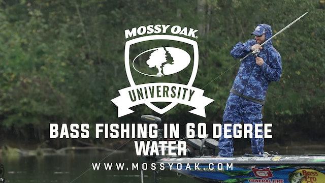 Bass Fishing in 60 Degree Water - Ott DeFoe Fishing Tips
