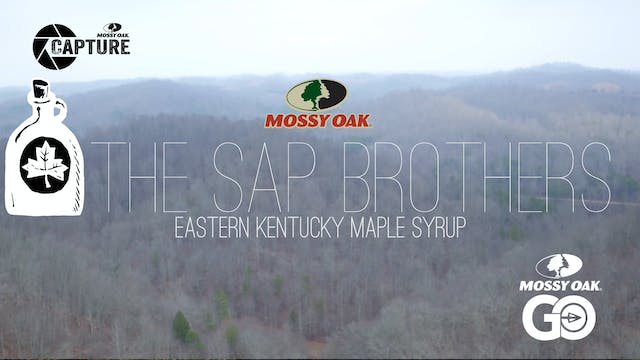 The Sap Brothers • Short Film