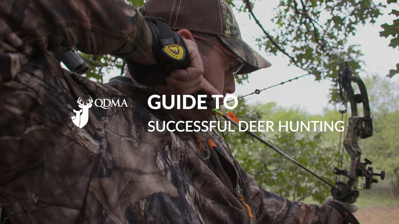QDMA Guide to Successful Deer Hunting