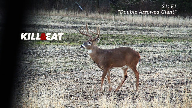 Double Arrowed Giant • Kill & Eat