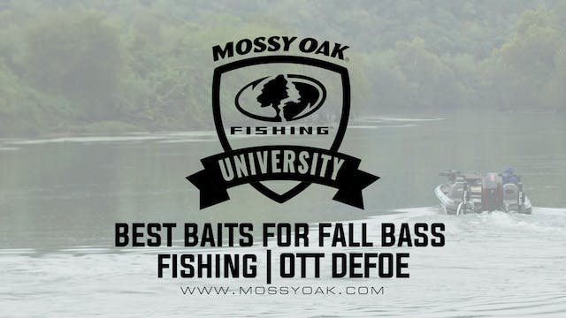 Best Baits for Bass in the Fall - Ott...