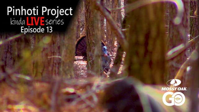 Kinda Live • Episode 13 • Pinhoti Pro...