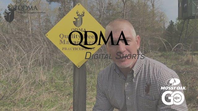Chronic Wasting Disease Testing • QDM...