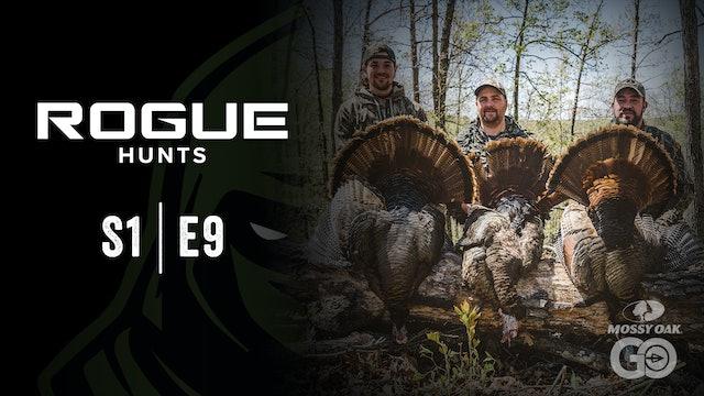 Rogue Hunts • S1 Ep9 • MO