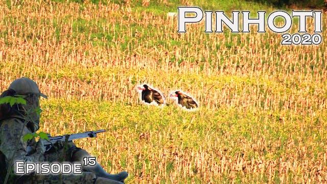 Pinhoti 2020 Ep 15 • Pinhoti Project