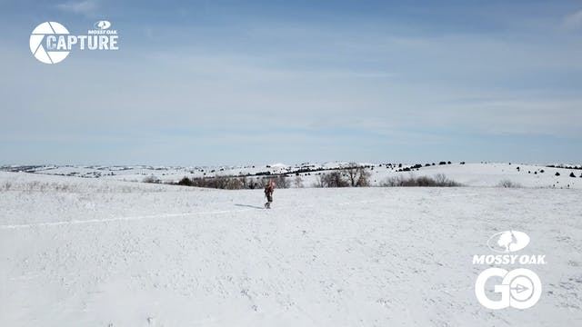 Cold Weather Nebraska Whitetails