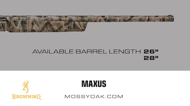 Browning •  Maxus • Product Reviews