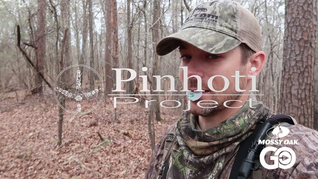 Mountain Gobbler W Paintbrush Beard • Pinhoti Project Day 27.28