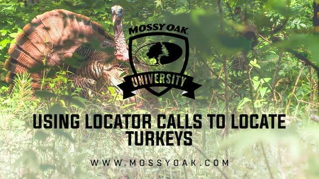 Using Locator Calls To Locate Turkeys