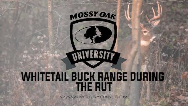 Mature Whitetail Buck Travel Range During the Rut
