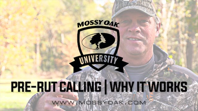Best Time To Use Deer Calls | Pre-Rut...
