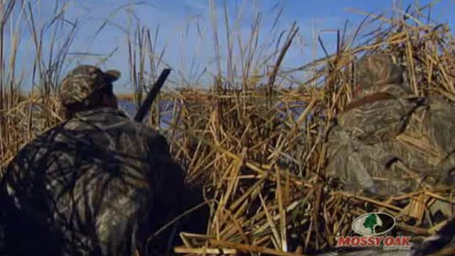 Hide and Peek • Delta Waterfowl Hunts...