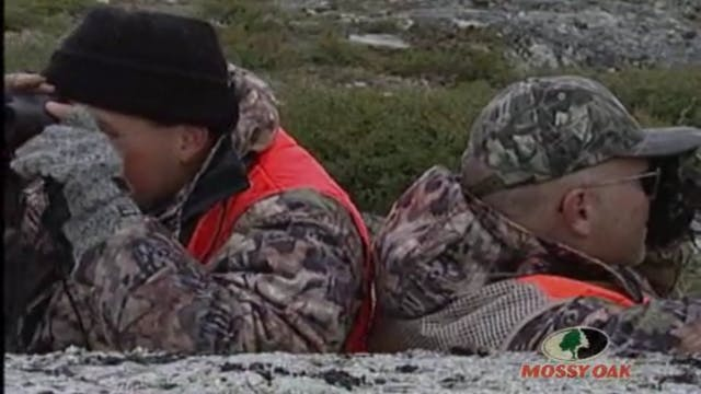 Birds & the Bous • Caribou Hunt in Ca...